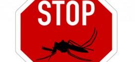 Malaria Prophylaxe für Singapur