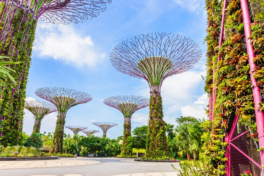 Garden by the bay in Singapur - ein bekannter Touristenspot